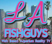 LA Fishguys, Aquarium Reality Video's